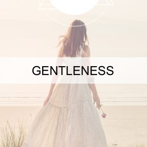 Gentleness + Grace BUTTON