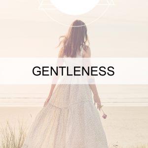Gentleness + Grace BUTTON