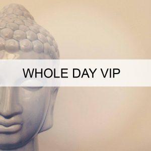 vip-day-acupuncture-food-meditation-yoga